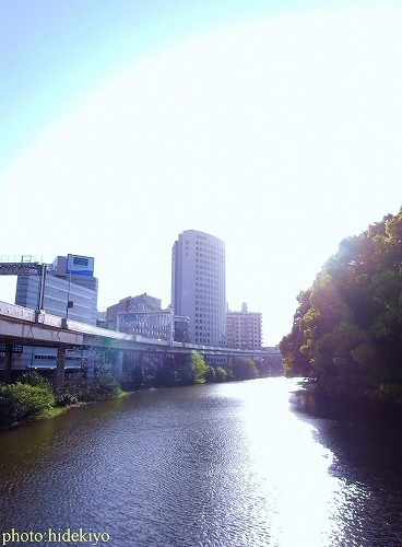 弁慶橋20100429.jpg